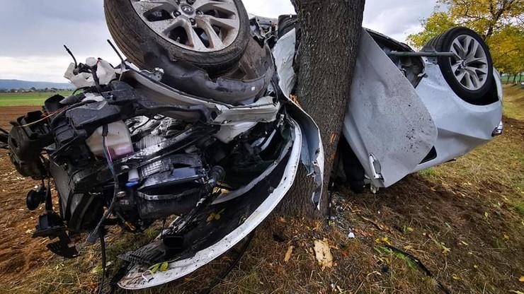 Samochód owinął się wokół drzewa. Kierowca wyszedł z auta o własnych siłach