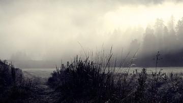 Gęsta mgła o poranku w ośmiu województwach. Ostrzeżenie IMGW