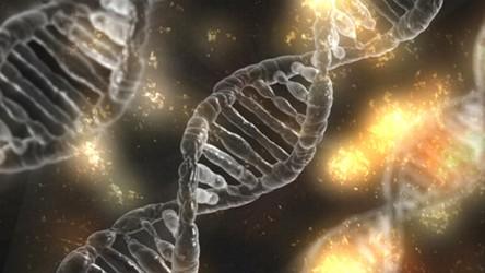 Technologia CRISPR pomoże w walce z koronawirusem i innymi groźnymi wirusami