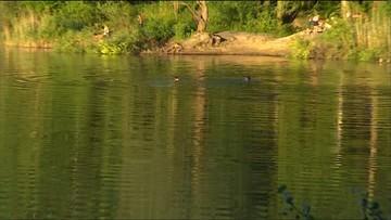35-latek utopił się w stawie. Ratował kolegów