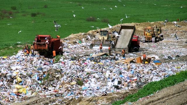 Polacy zdecydowanie nie są eko! 2/3 z nas w ogóle nie segreguje śmieci