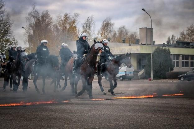 Policyjny egzamin. Wszystkie konie zdały