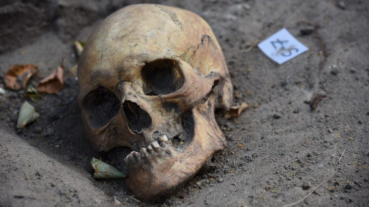 Ludzkie szczątki w gdańskim Nowym Porcie. Odkopano 14 szkieletów