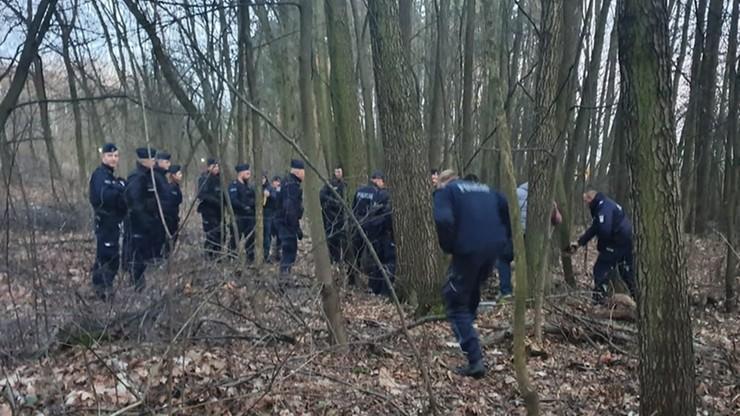Grupa policjantów kontra dzik. Zwierzę zaatakowało trzy osoby
