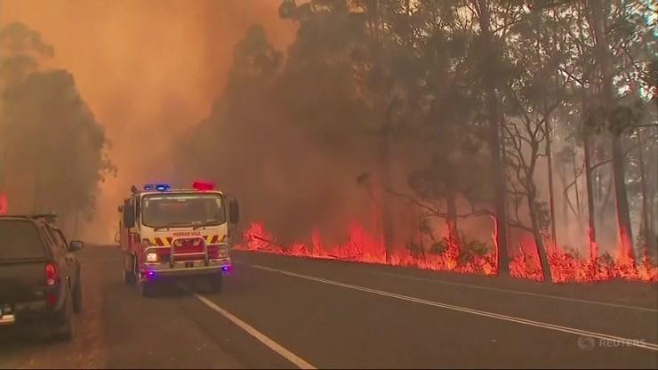 Pożary szaleją w Australii. Stan wyjątkowy w Nowej Południowej Walii
