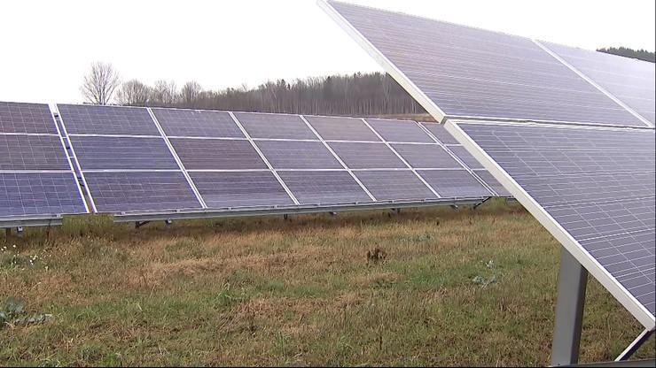 Farma fotowoltaiczna na Dolnym Śląsku. Tańszy prąd, mniej CO2 w atmosferze