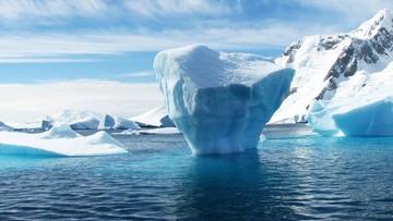 """Tak ciepło na Antarktydzie jeszcze nie było. """"Trend zmiany klimatu"""""""