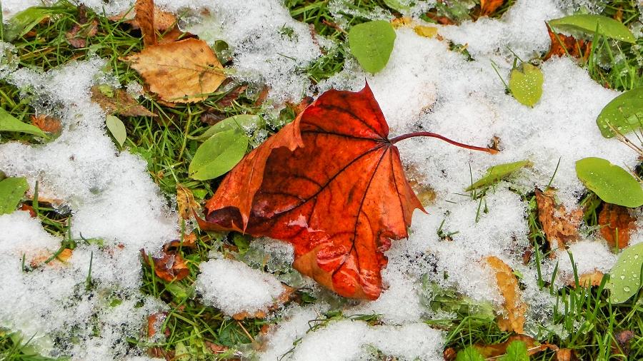 16.10.2019 11:00 Już za 2 tygodnie na nizinach spadnie pierwszy śnieg? Czy to będzie początek długiej zimy?