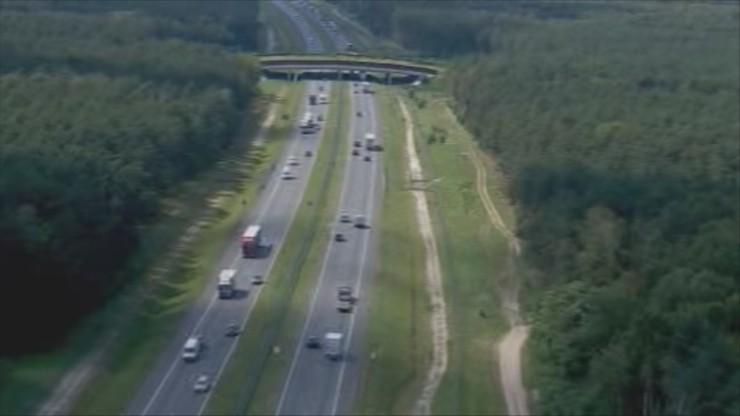 GDDKiA przeciwdziała występowaniu ASF. Zamyka przejścia dla zwierząt wzdłuż autostrad