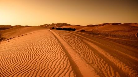 Globalne ocieplenie jeszcze przed 2070 zmieni dużą część naszej planety w pustynię