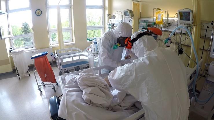 Lamy pomogą w walce z koronawirusem