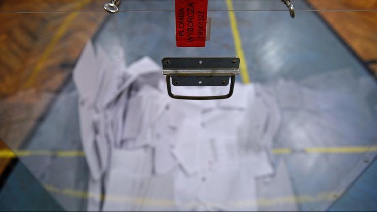 Wybory prezydenckie. Jak głosowała Polonia w USA?