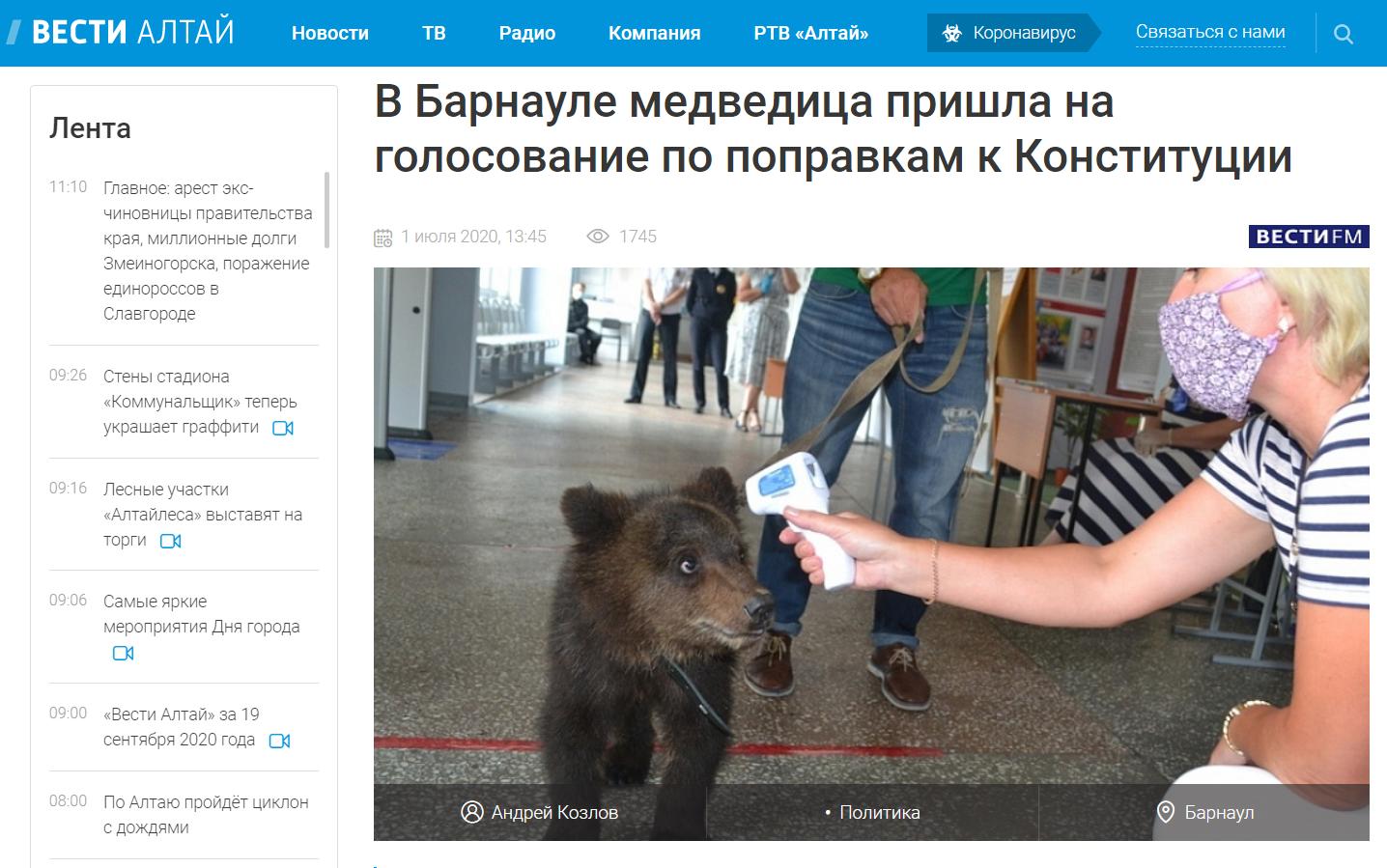 """""""W Barnaule niedźwiedzica przyszła na głosowanie w sprawie poprawek do konstytucji"""""""