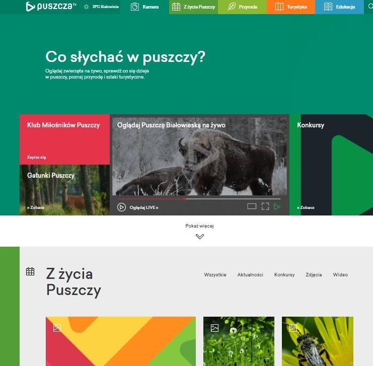 Projekt Puszcza.tv przedłużono do 30 czerwca 2021 roku